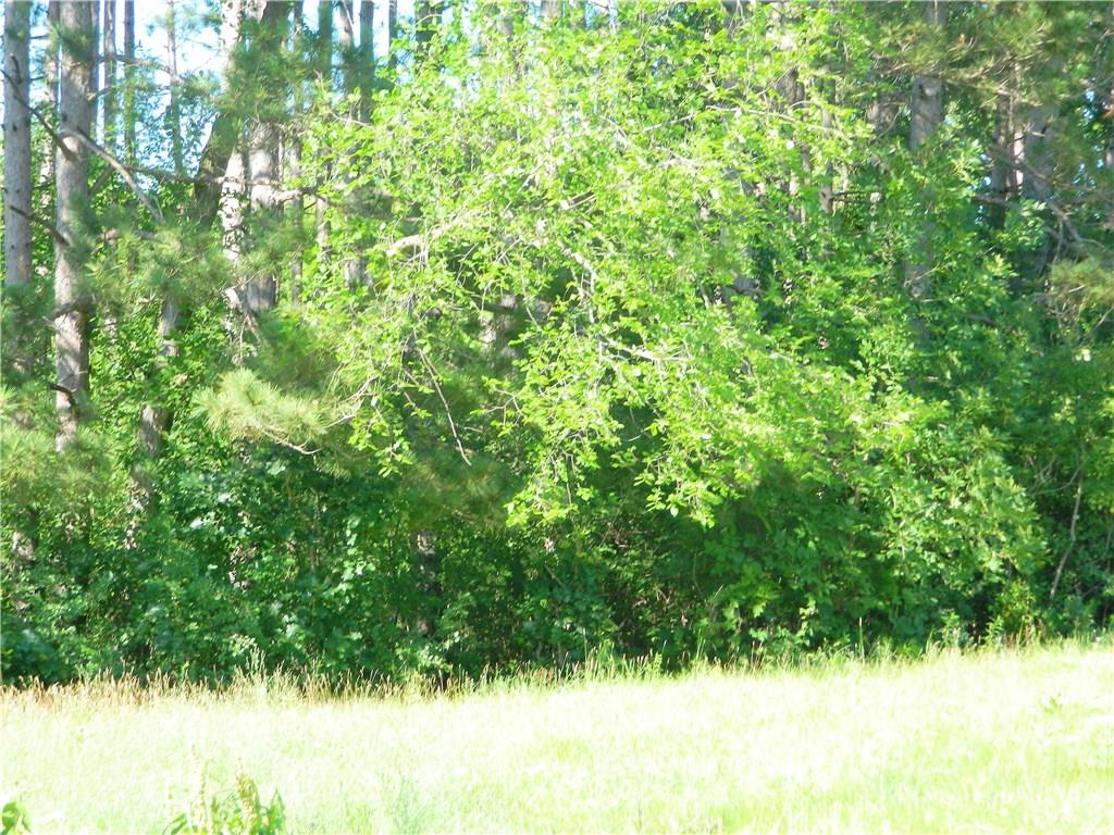 Lot 2 3rd Avenue N Property Photo - Frederic, WI real estate listing
