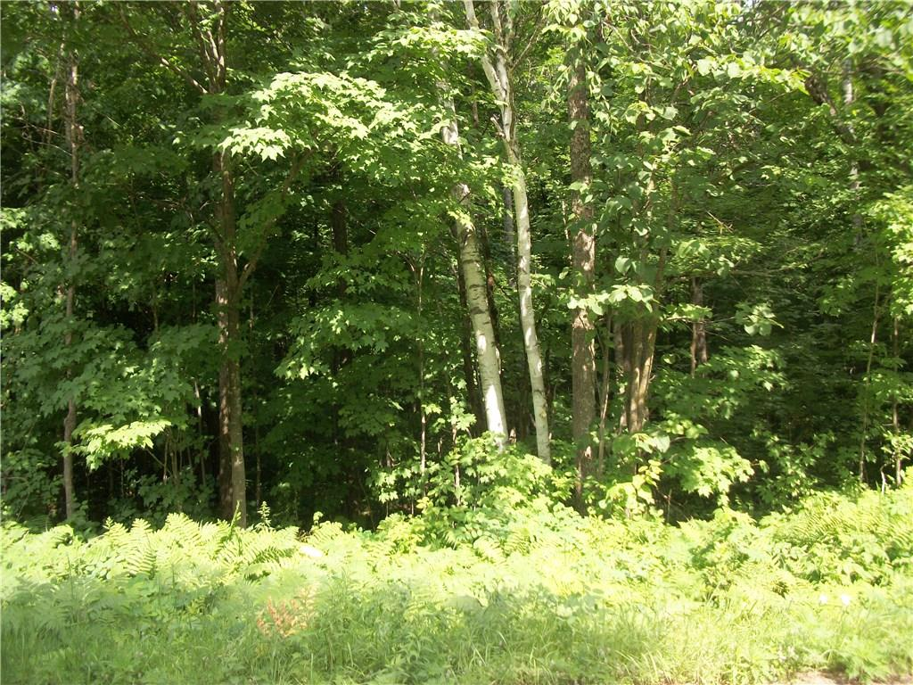 Lot 96 Woods Avenue Property Photo - Birchwood, WI real estate listing