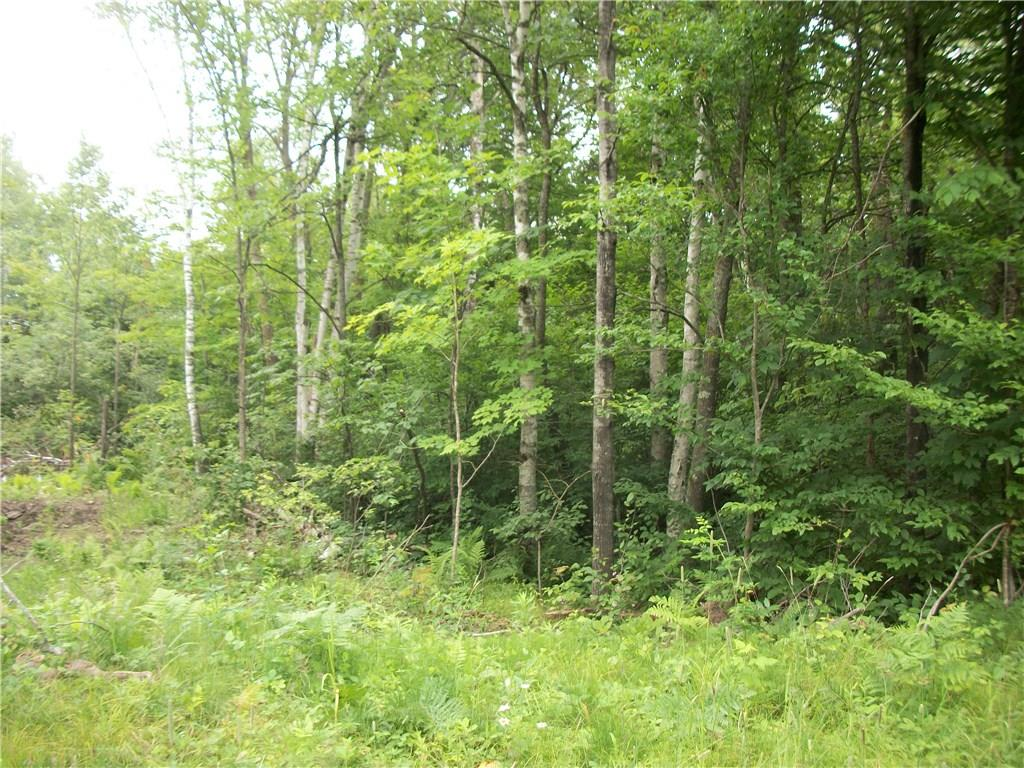 Lot 103 Arcadia Place/30th Ave Avenue Property Photo - Birchwood, WI real estate listing