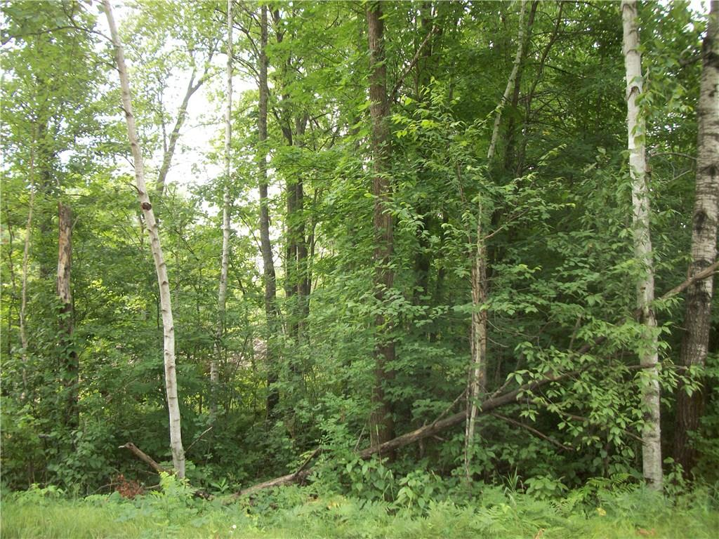 Lot 106 Arcadia Place/30th Ave Avenue Property Photo