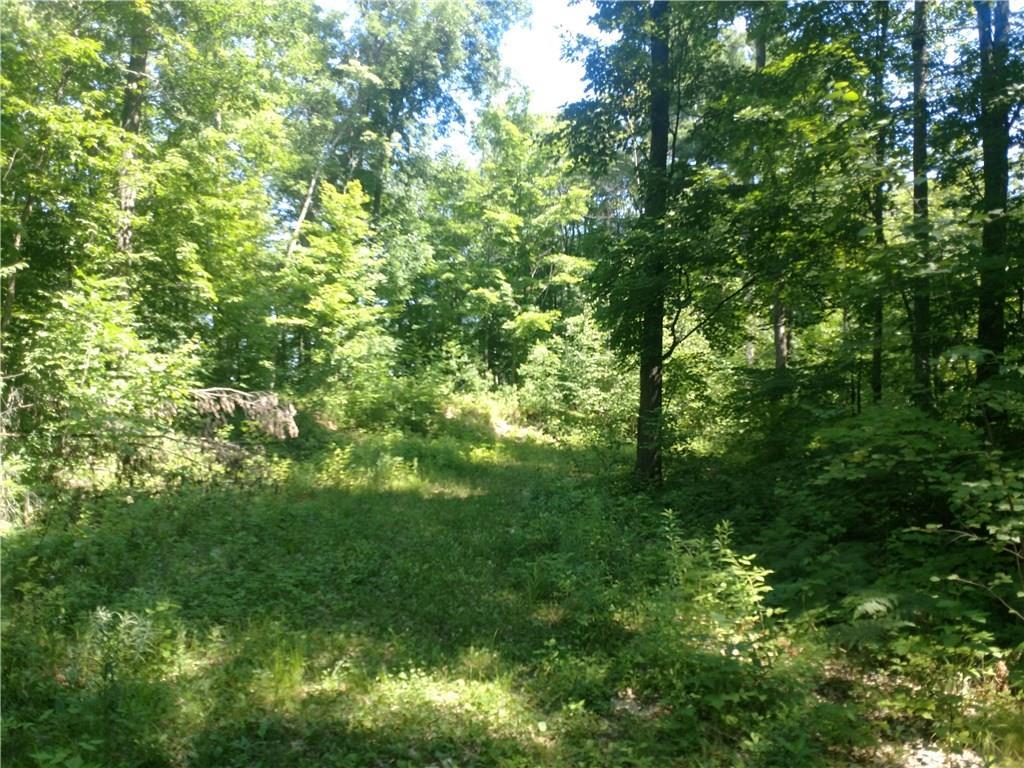 0 Mossy Lane, Stone Lake, WI 54876 - Stone Lake, WI real estate listing