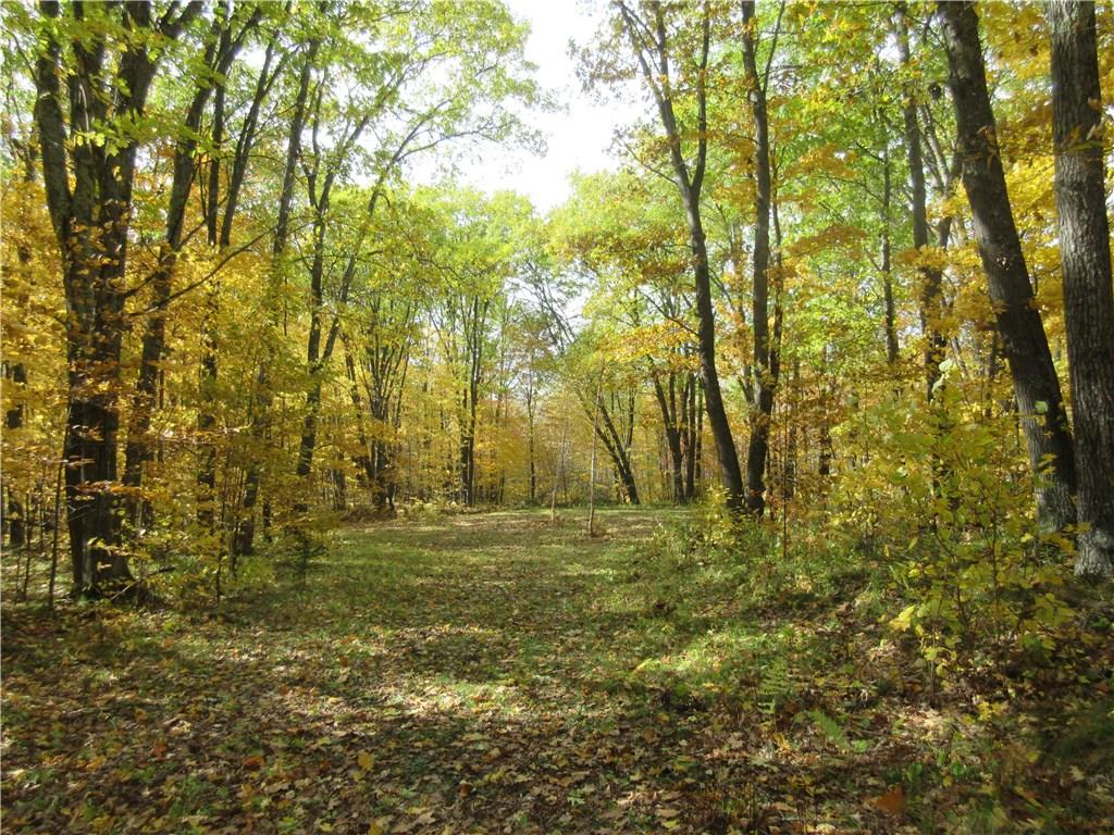 XXX N Fire Lane Rd., Dairyland, WI 54830 - Dairyland, WI real estate listing