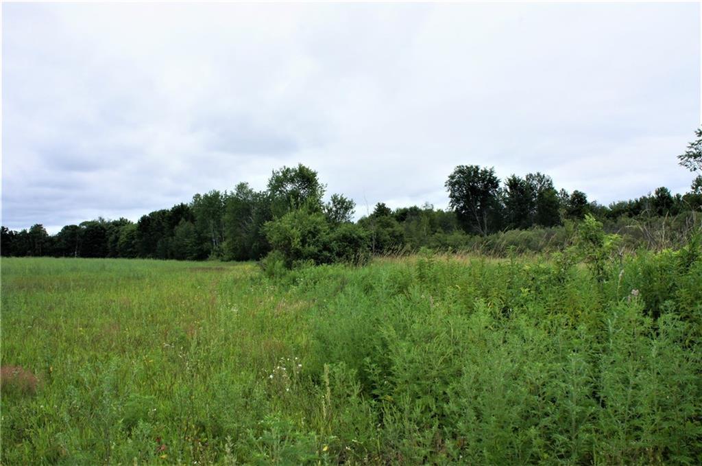 73 Acres County Rd ZZ Property Photo - Mondovi, WI real estate listing