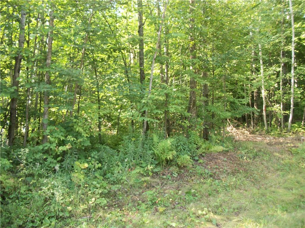 Lot 27 Woods Avenue, Birchwood, WI 54817 - Birchwood, WI real estate listing