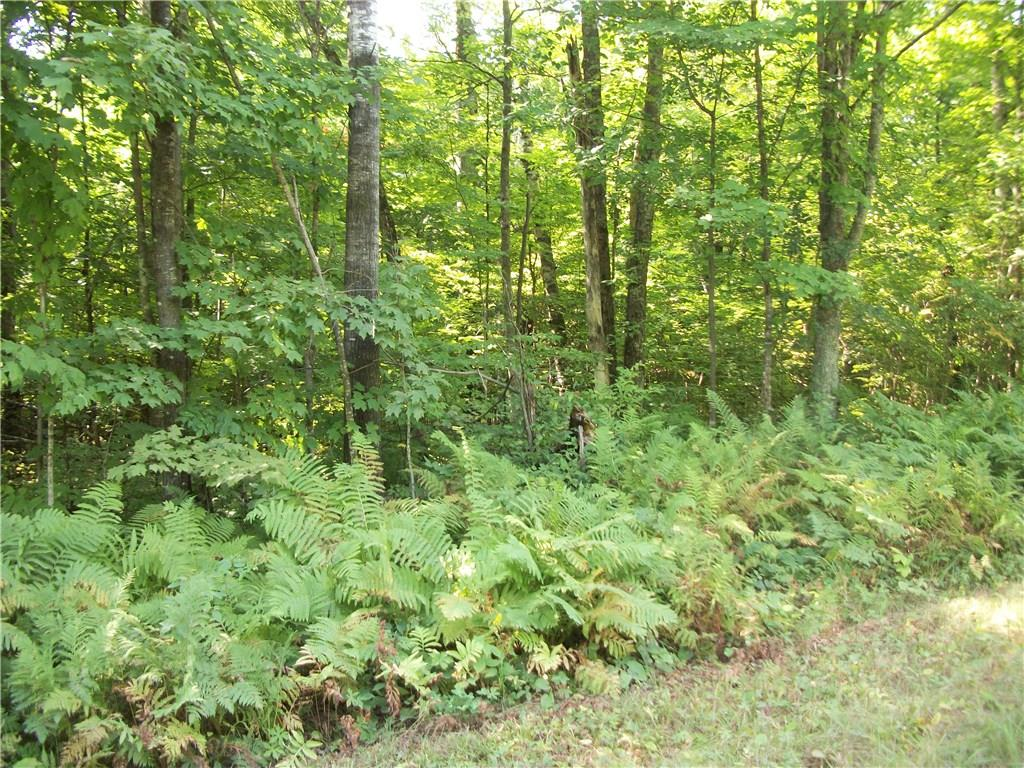 Lot 28 Woods Avenue Property Photo - Birchwood, WI real estate listing