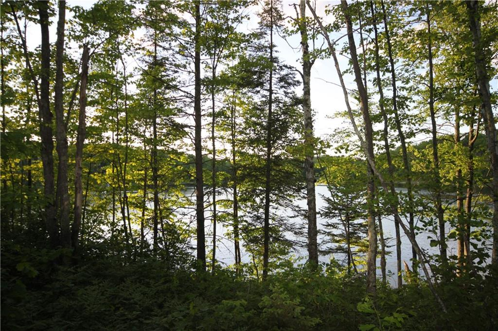 Lot 7 Timber Wolf Drive, Springbrook, WI 54875 - Springbrook, WI real estate listing