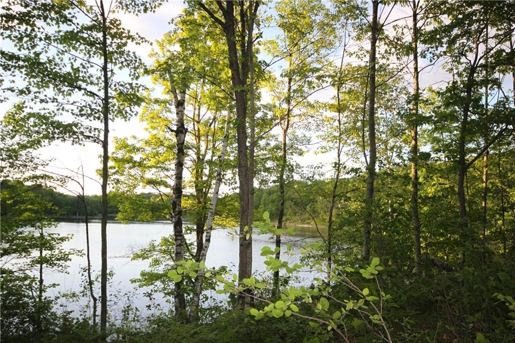 Lot 9 Timber Wolf Drive, Springbrook, WI 54875 - Springbrook, WI real estate listing