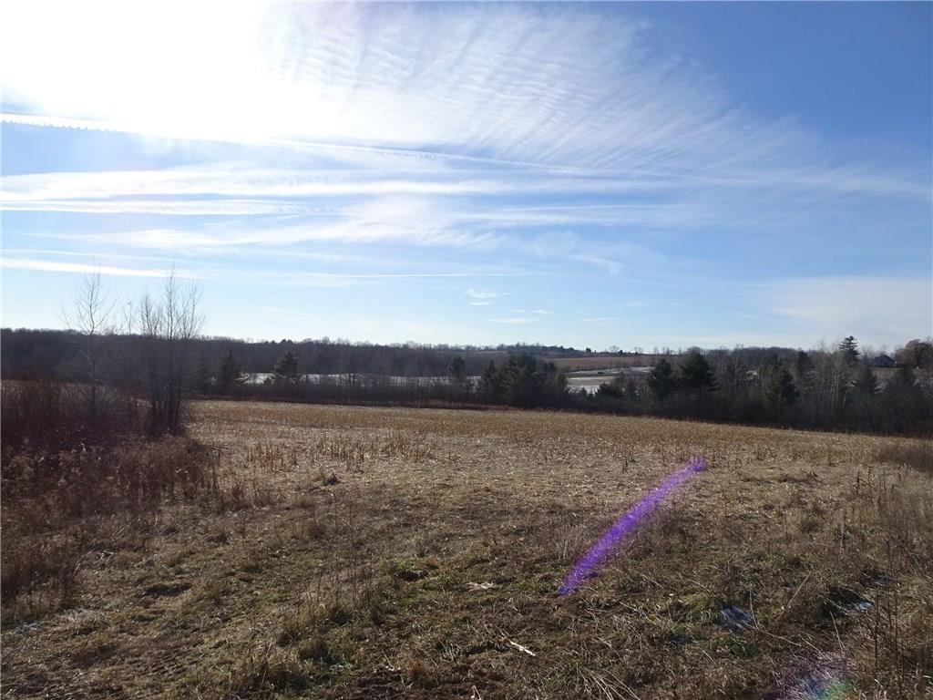 xxx 80th Ave (40 Acres), Wilson, WI 54027 - Wilson, WI real estate listing