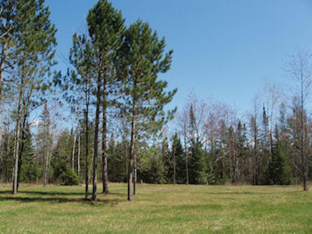 On City Wells Rd Property Photo - Park Falls, WI real estate listing