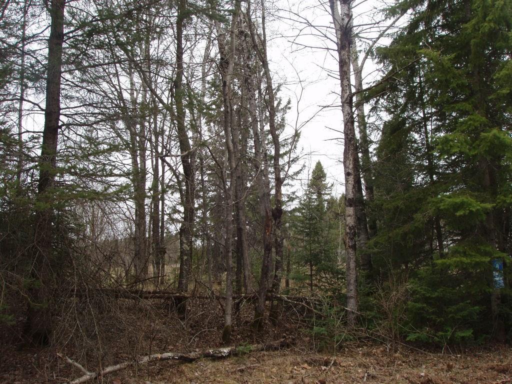On Wisconsin St, Glidden, WI 54527 - Glidden, WI real estate listing