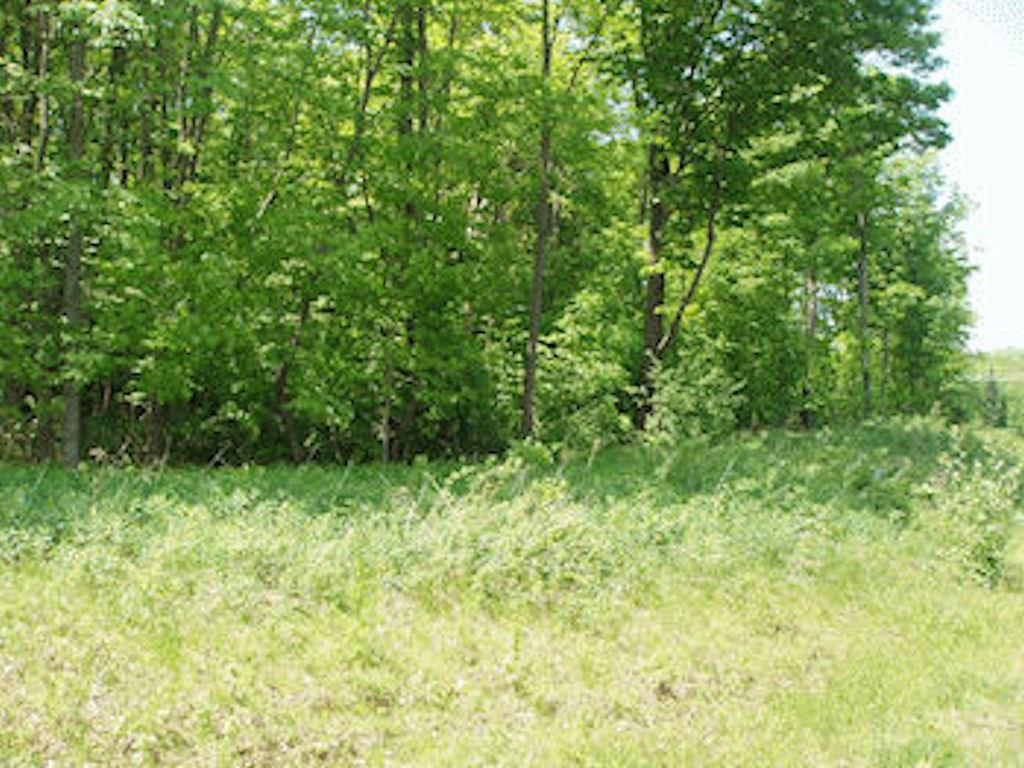 Lot 12 Margaret Ln Property Photo
