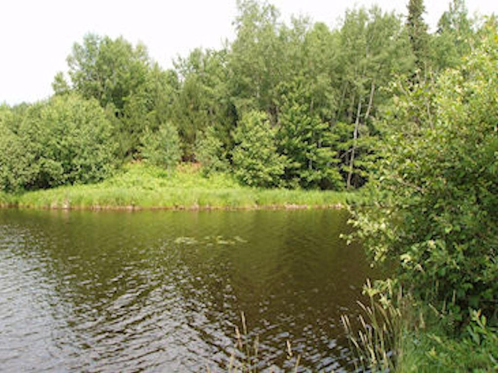 On Woodduck Dr Property Photo - Park Falls, WI real estate listing