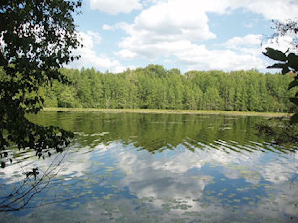 On Chickadee Tr E Property Photo - Park Falls, WI real estate listing