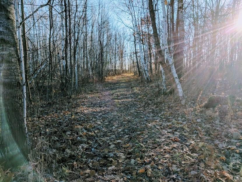 30485 Hwy M, Holcombe, WI 54745 - Holcombe, WI real estate listing