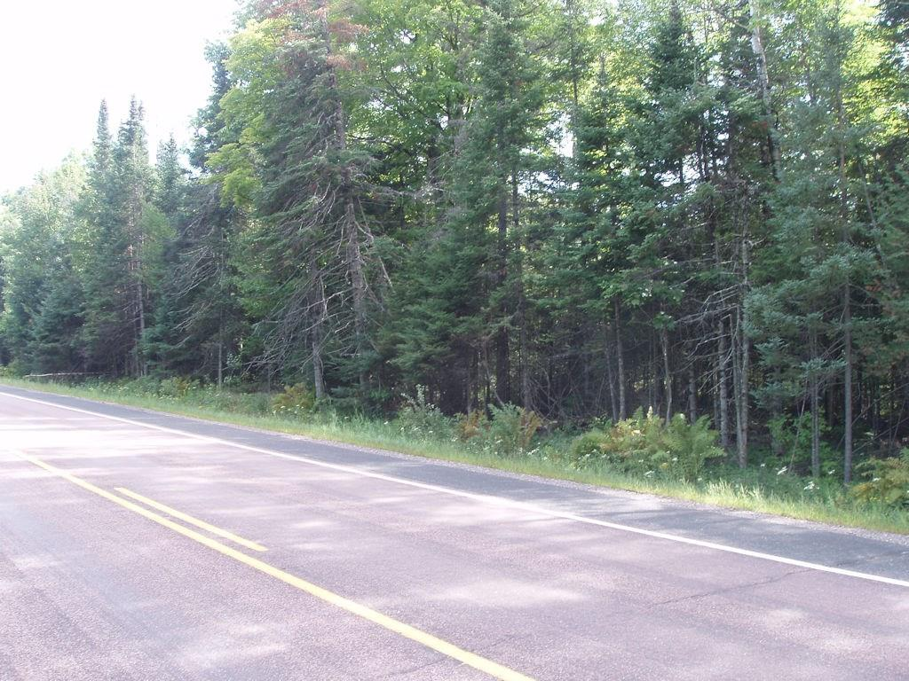 On Hwy 13, Butternut, WI 54514 - Butternut, WI real estate listing