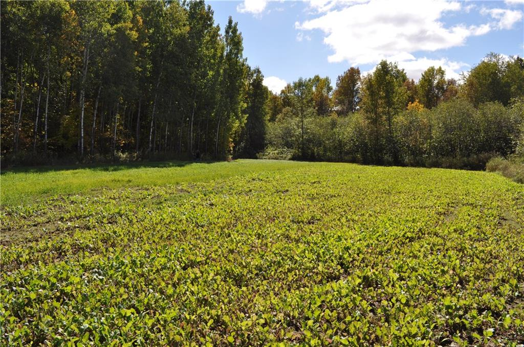 0 School (78.36 +/- Acres) Road Property Photo - Lublin, WI real estate listing