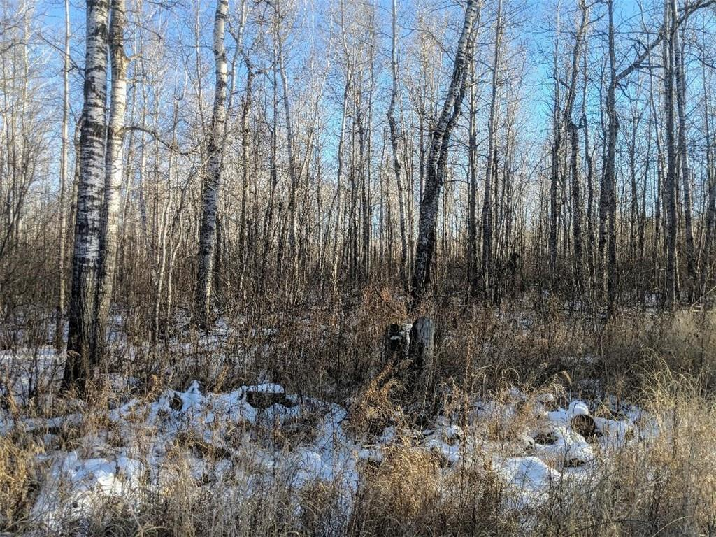 998 COUNTY HWY W Property Photo - Superior, WI real estate listing