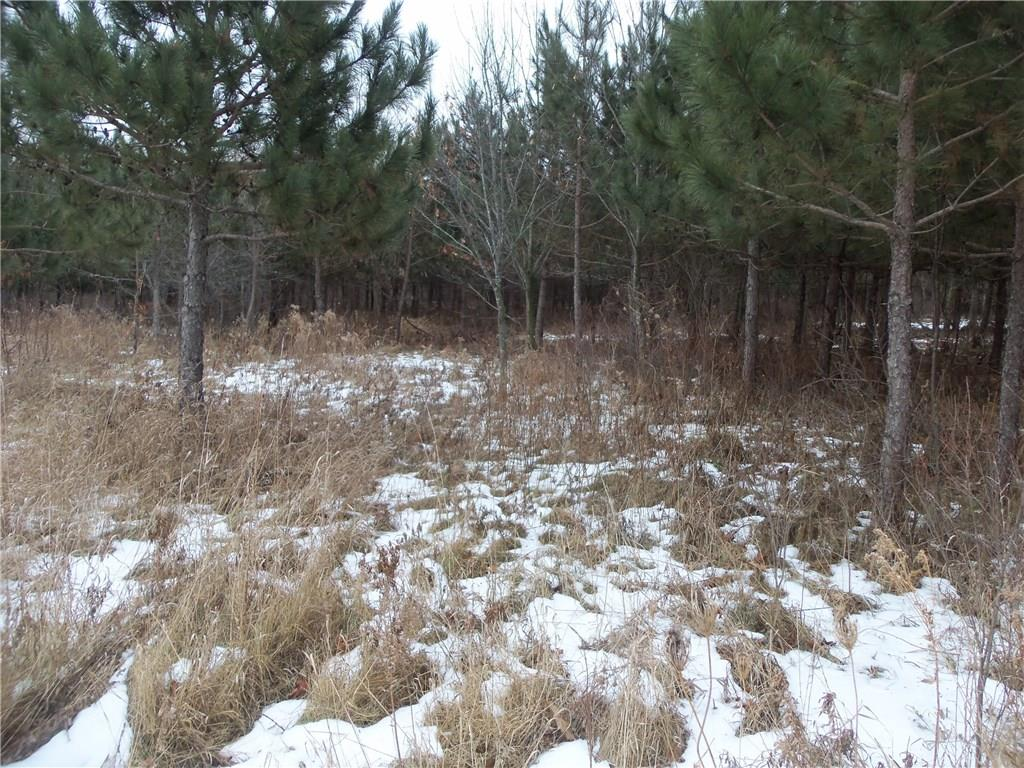 80 ACRES HWY M Property Photo - River Falls, WI real estate listing