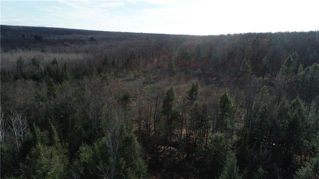 0 Dam Road Property Photo - Ojibwa, WI real estate listing