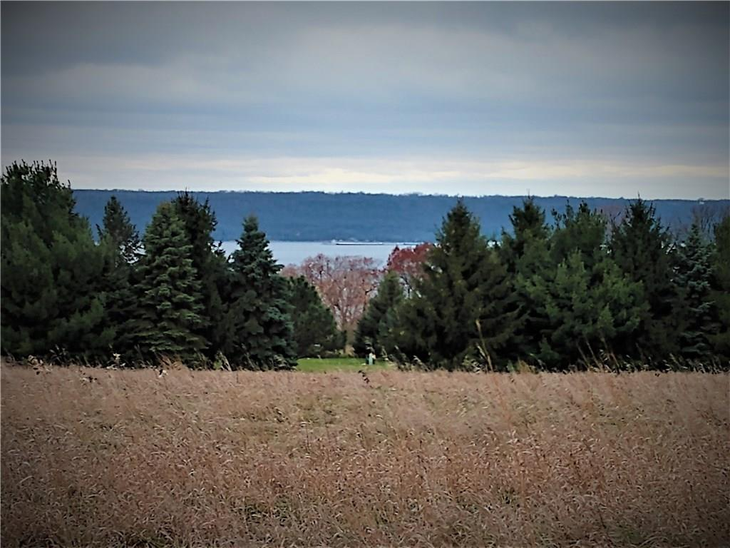 6.07 Acres 451st Street Property Photo - Maiden Rock, WI real estate listing