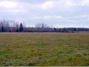 10 Acres on Cty. Rd. B and Circle Rd Property Photo - Glen Flora, WI real estate listing