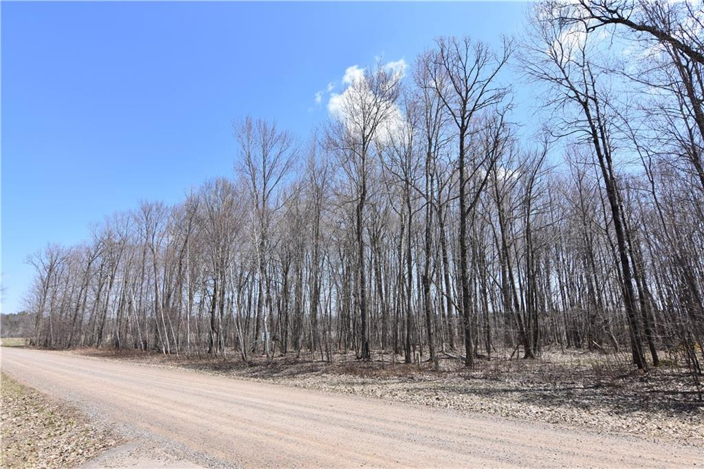 Lot 30 150th Street Property Photo - Bloomer, WI real estate listing