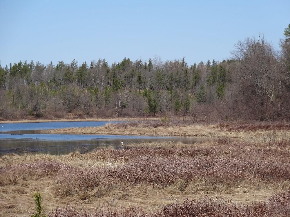 On Middle Rd Road Property Photo - Minong, WI real estate listing