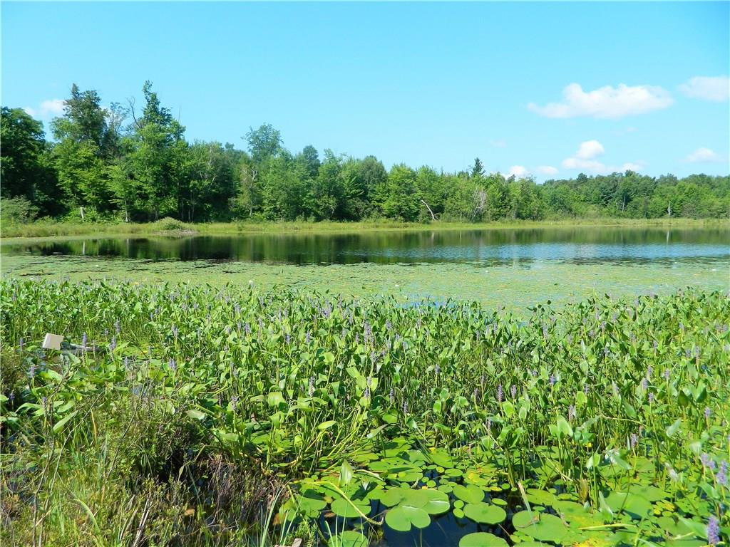Lot 3 Cranberry Marsh Road Property Photo