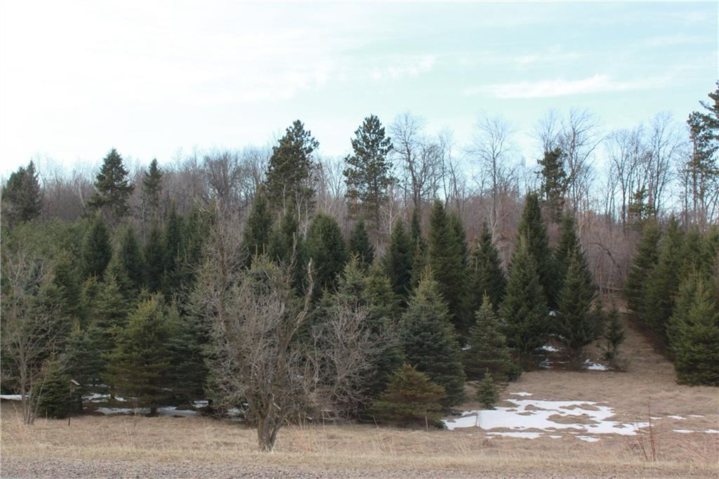 Lot 1 CSM 4403 1250th Avenue Property Photo - Wheeler, WI real estate listing