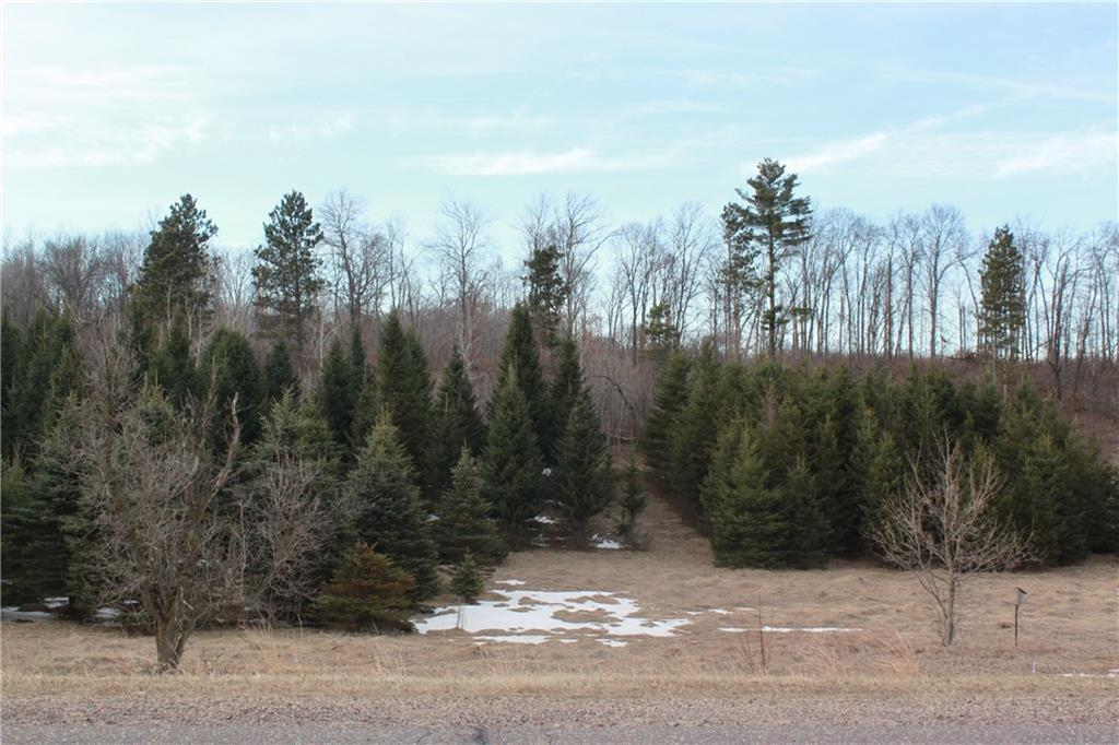 Lot 2 CSM 4403 1250th Avenue Property Photo - Wheeler, WI real estate listing