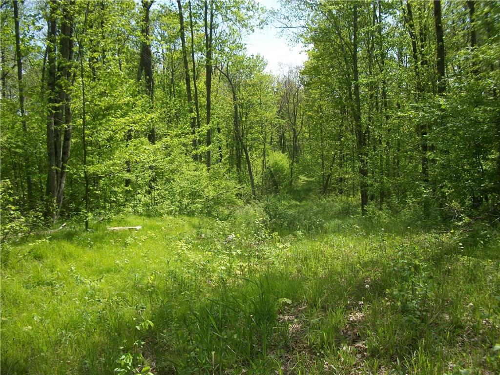 Lot 5 Deer Creek Lane, Radisson, WI 54867 - Radisson, WI real estate listing