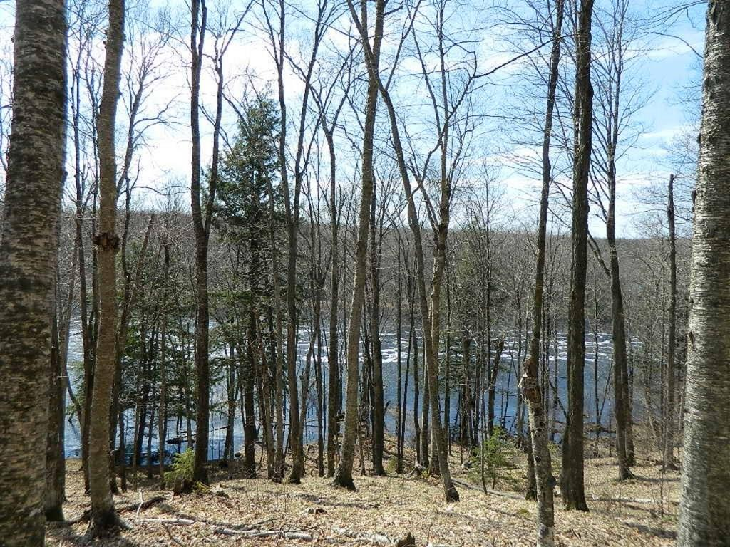 On Nature Trail Property Photo - Winter, WI real estate listing