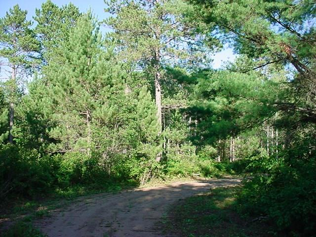 Lot 3 Up North Lane Property Photo - Hayward, WI real estate listing