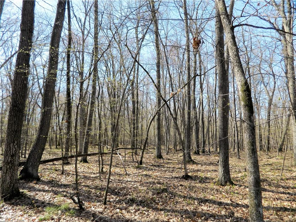 Lot 17 103rd Street Property Photo - Frederic, WI real estate listing