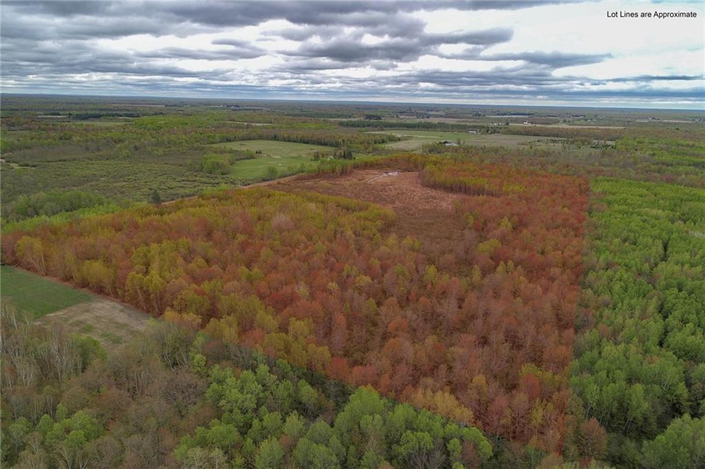 80 Acres Thatcher Road, Glen Flora, WI 54526 - Glen Flora, WI real estate listing