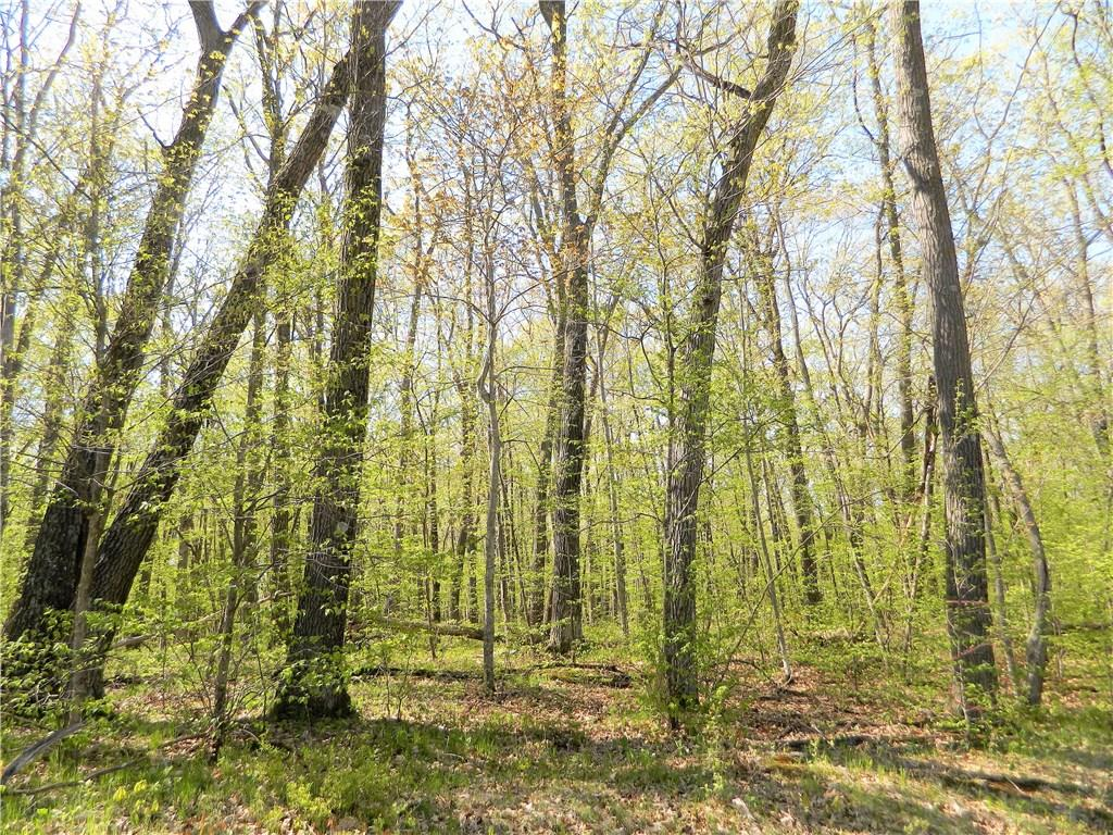 Lot 19 103rd Street Property Photo - Frederic, WI real estate listing