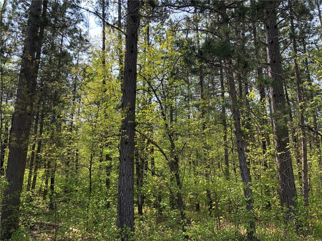 0 Kelly Rd Property Photo - Lake Nebagamon, WI real estate listing