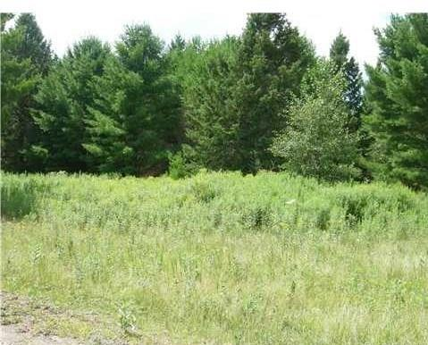 Lot 9 Owen Lane Property Photo - Cable, WI real estate listing