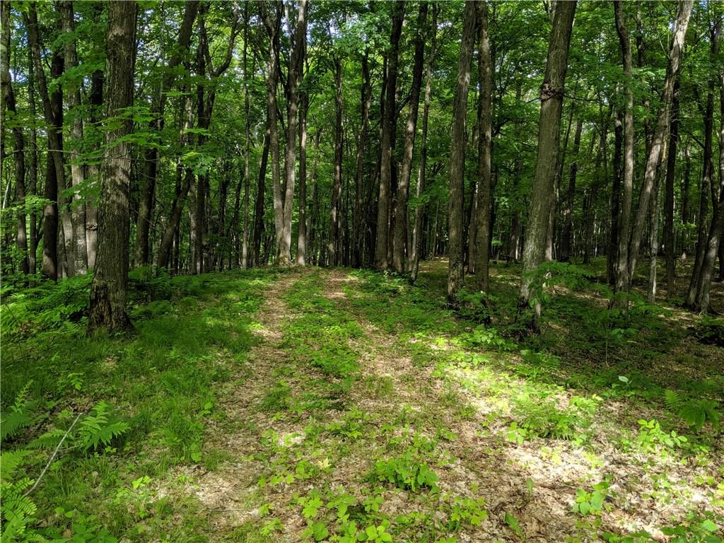 Lot 16 Musky Bay Road Property Photo