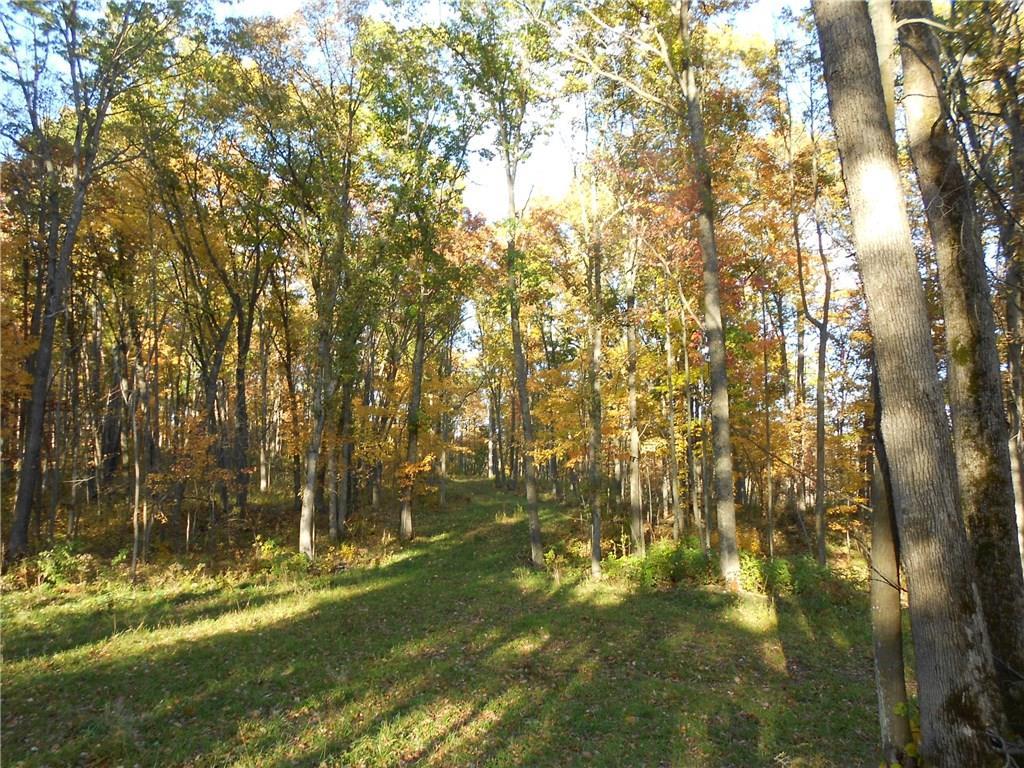 3 Edgewood Drive Property Photo - Stone Lake, WI real estate listing