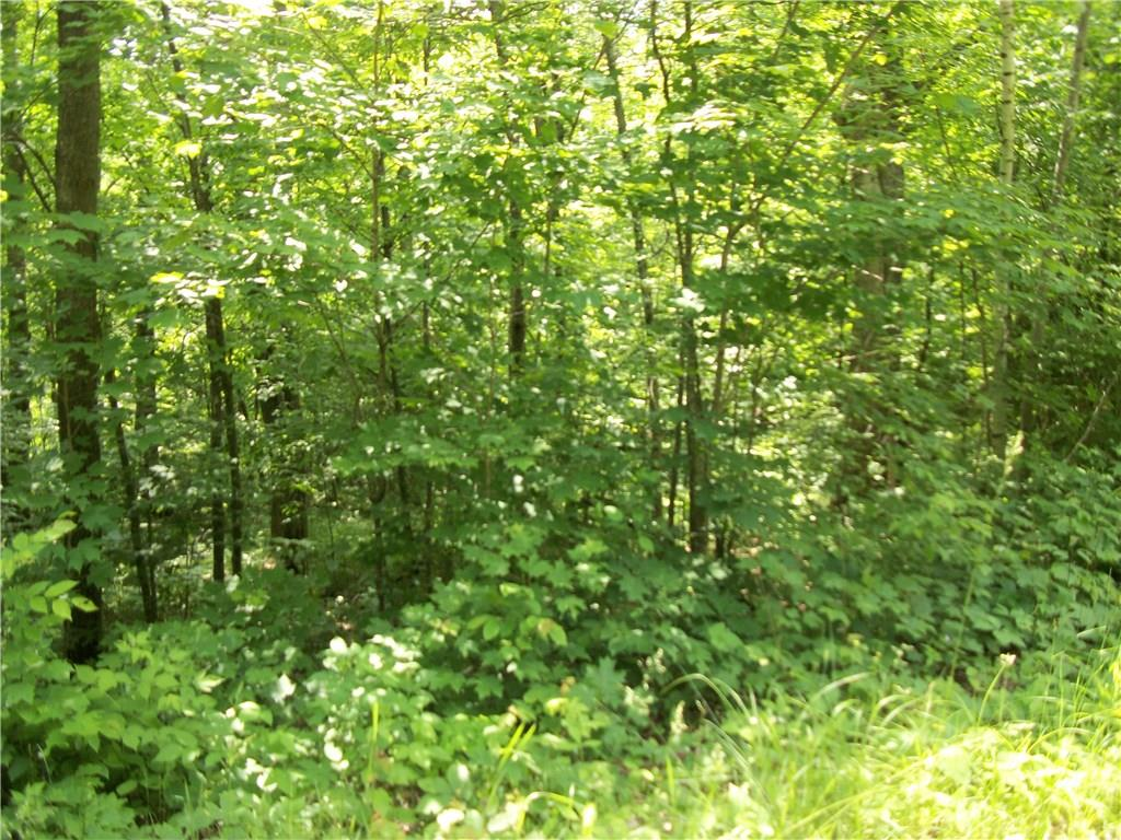 Lot 51 Allison, Birchwood, WI 54817 - Birchwood, WI real estate listing