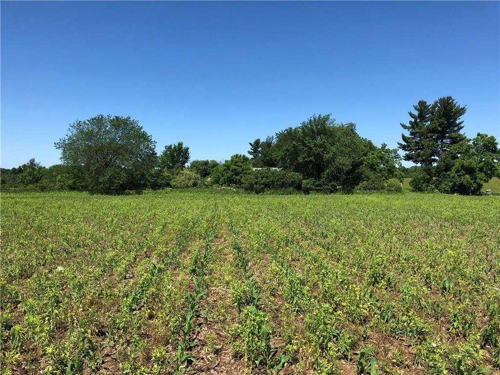 Lot 4 530th Avenue Property Photo - Elk Mound, WI real estate listing