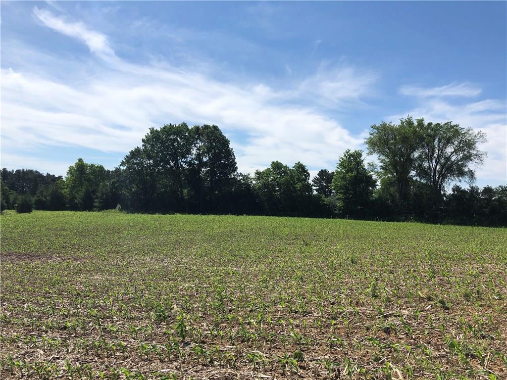 Lot 9 525th Avenue, Elk Mound, WI 54739 - Elk Mound, WI real estate listing