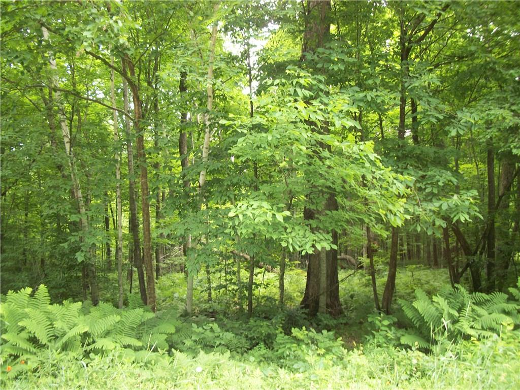Spruce Subdivion Of The Woods Real Estate Listings Main Image