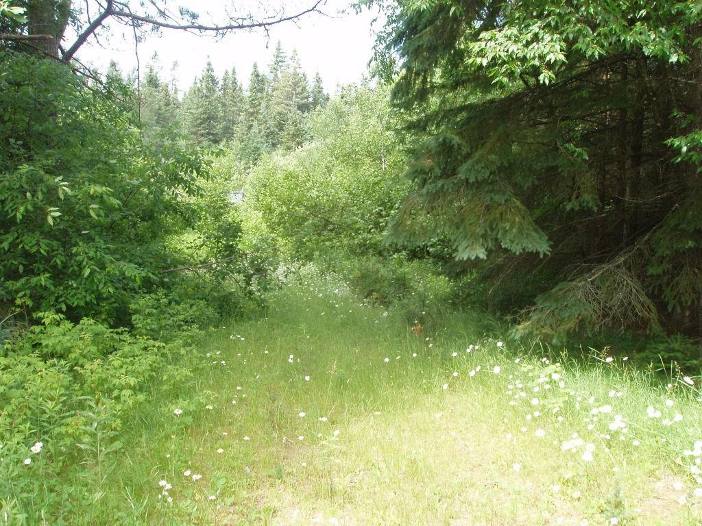 77917 Thunder Stick Rd Property Photo - Glidden, WI real estate listing