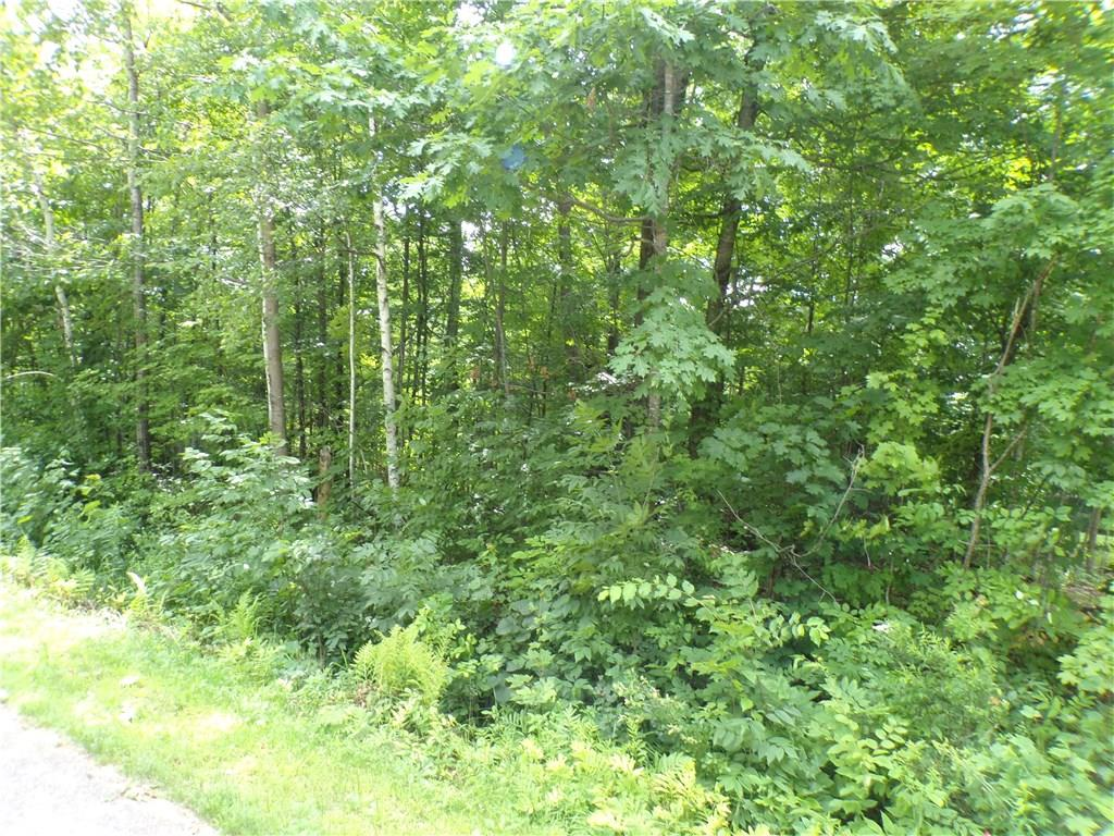 2.5 Acres 8th Street Property Photo - Cornell, WI real estate listing