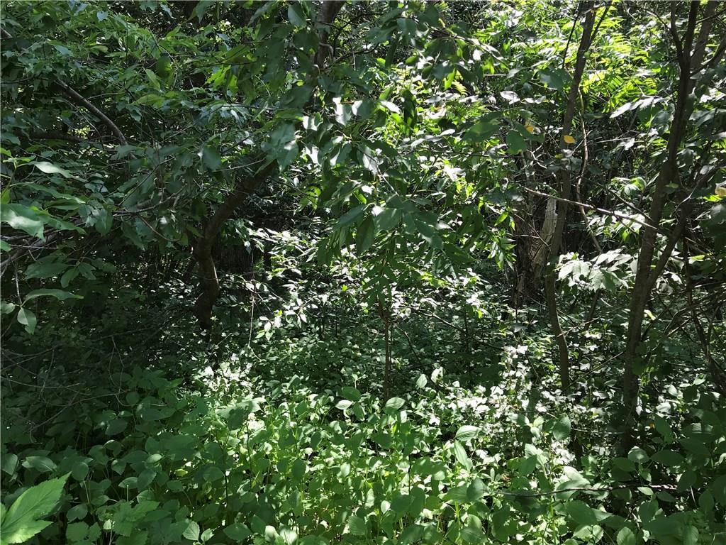 3177 30th Ave (Lot 2), Elk Mound, WI 54729 - Elk Mound, WI real estate listing