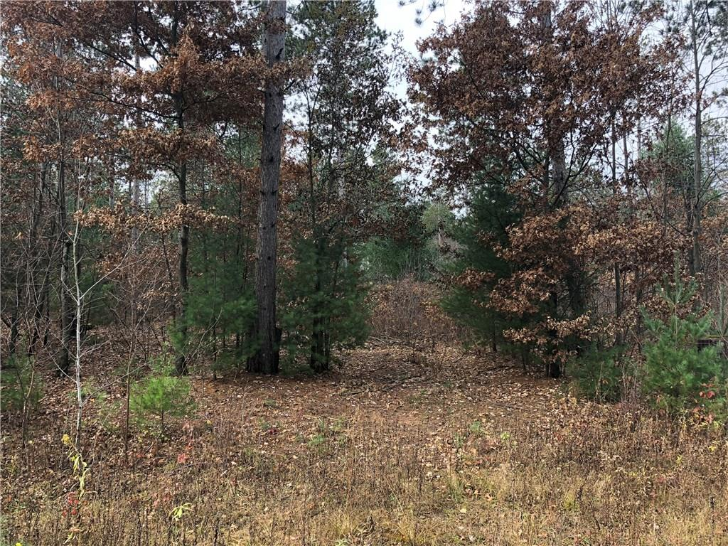 Lot 1 954th Street Property Photo - Colfax, WI real estate listing