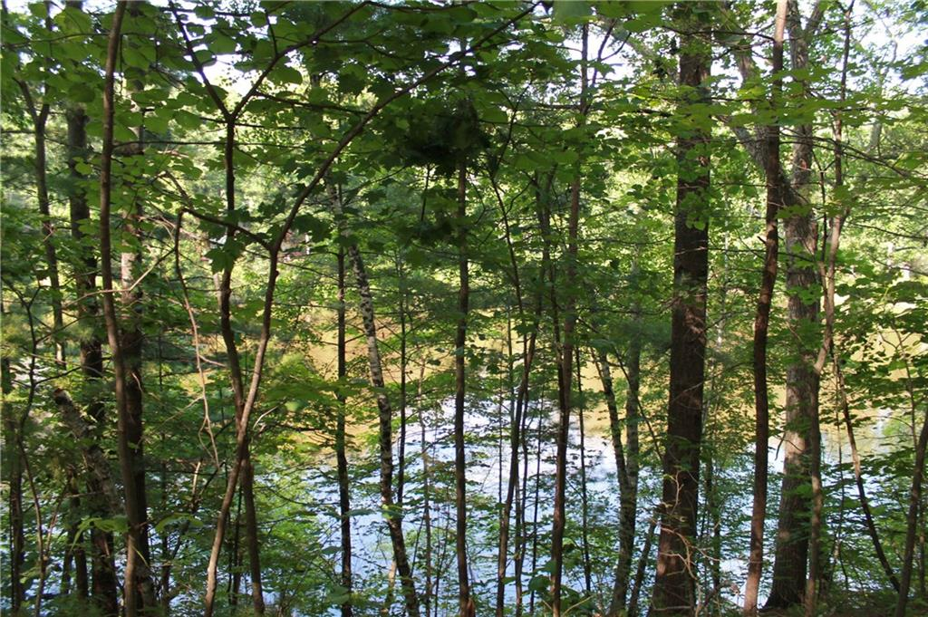 Lot 15 Lofty Pines Road, Other, MN 55063 - Other, MN real estate listing