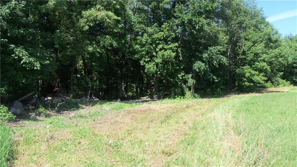 60 ACRES 100TH ST, Frederic, WI 54837 - Frederic, WI real estate listing